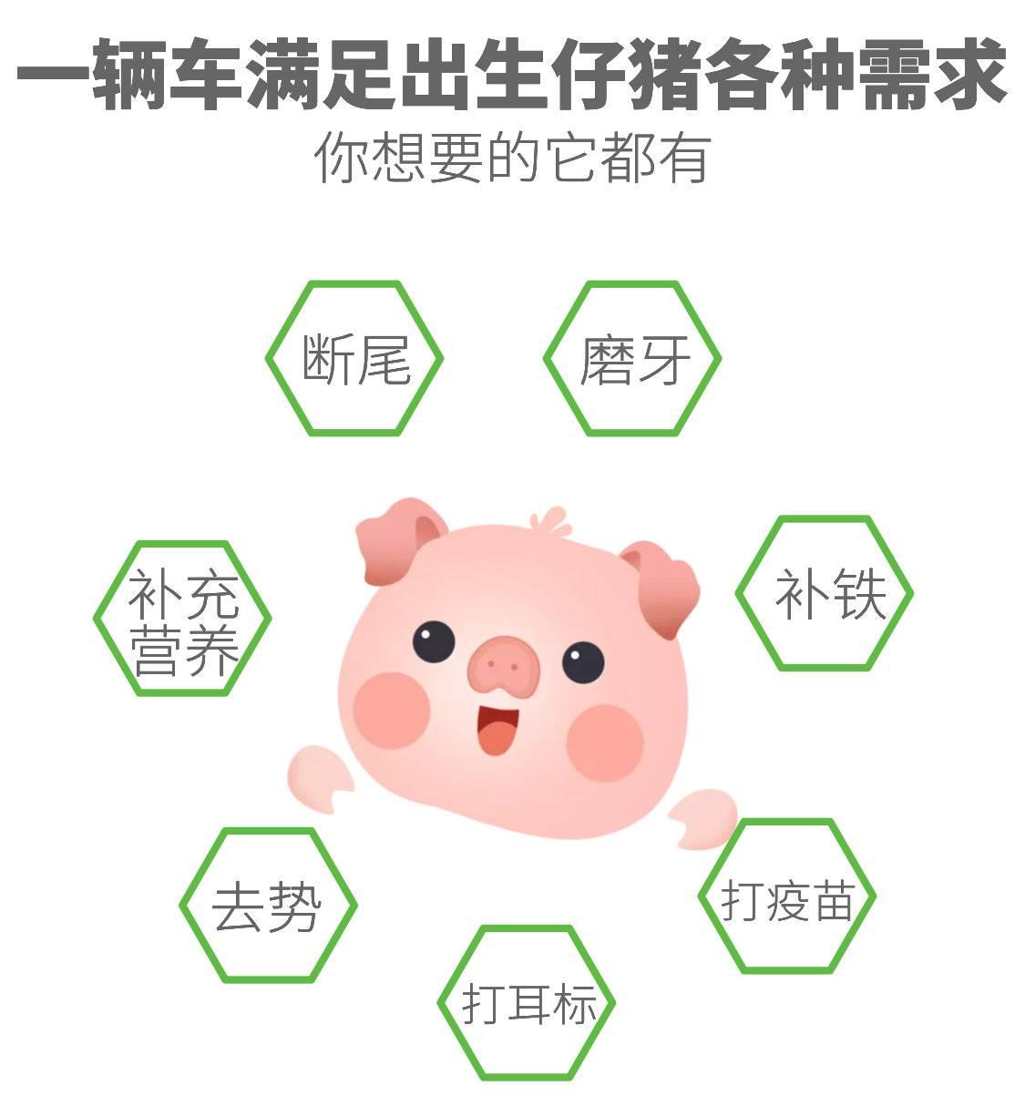 仔猪护理平台4.jpg